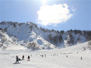 スキー 場 中里 湯沢