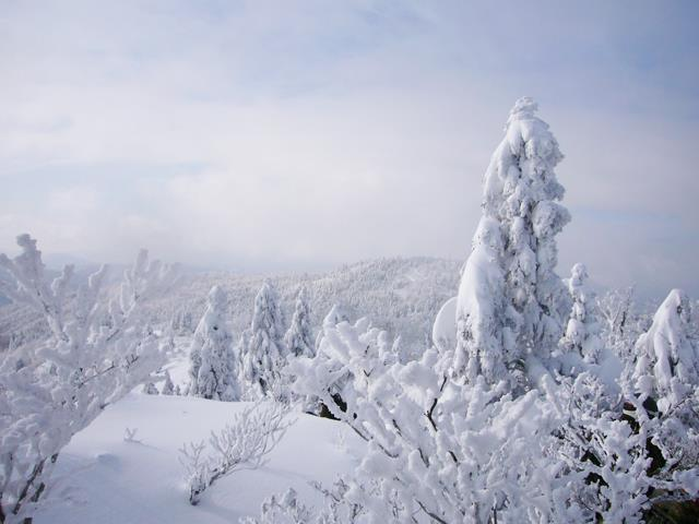 恐 羅漢 山 スキー 場