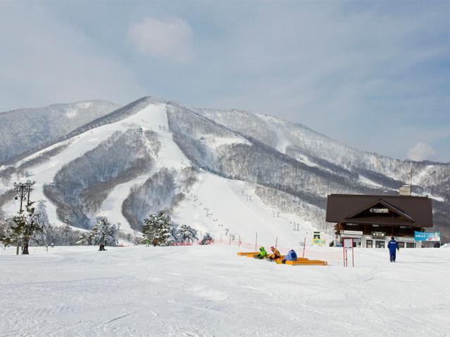 ■  夜発日帰り 斑尾高原スキー場