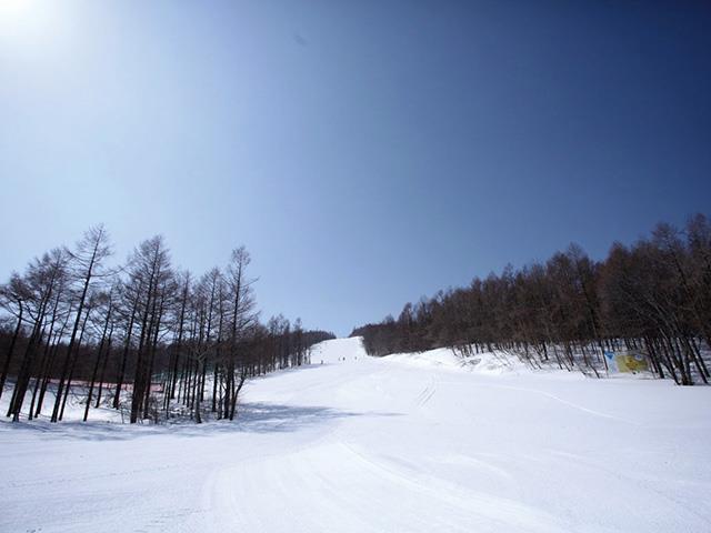 ■マイカーで行く グランディ羽鳥湖スキーリゾート 日帰りプラン(リフト券+入浴)