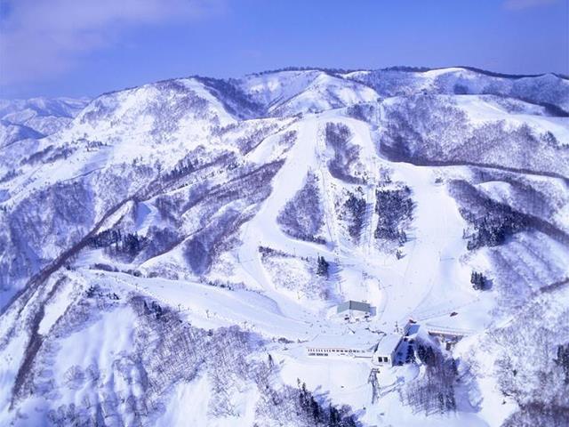■【リフト1日券プラン】新幹線で行く 日帰り GALA湯沢スキー場(自由席)
