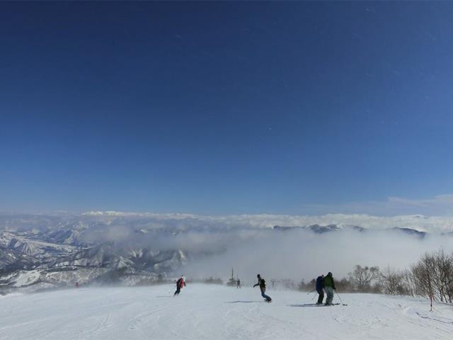 ■【初滑り】新幹線で行く 日帰り かぐらスキー場(時間帯指定席)