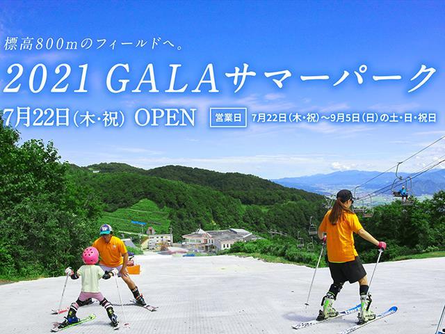 ■≪リフト1日券プラン≫普通車指定席新幹線で行く 日帰り GALA湯沢スキー場(2名参加以上専用)