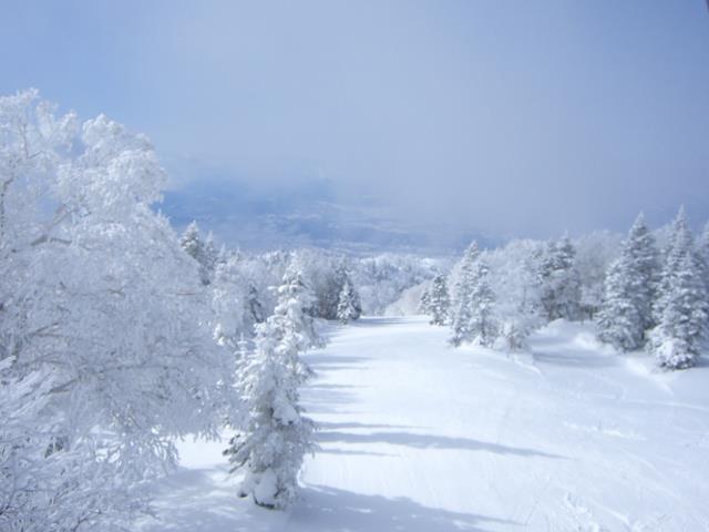 ■【スキーエクスプレス】竜王スキーパーク ゲレ近ホテルプラン(日替わり・鍋又は陶板焼)