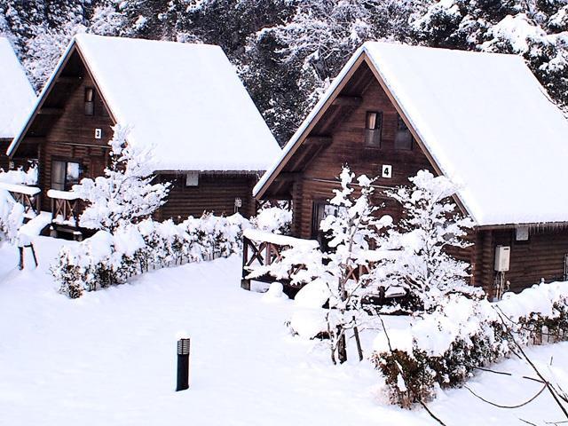 ◆【博多発着】夜発バス めがひらスキー場 コテージせせら